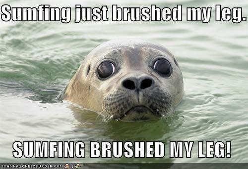 Sumfing just brushed my leg. SUMFING BRUSHED MY LEG!